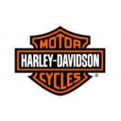 Harley Davidson (8)